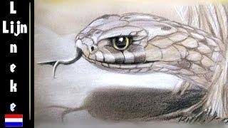 Hoe teken je een slang in kleur - Lineke en the Snake artist
