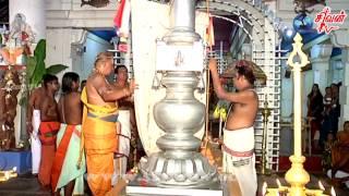 நல்லூர் கைலாசப் பிள்ளையார் கோவில் கொடியேற்றம் 01.05.2017