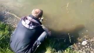 платная рыбалка в донецкой области 2016