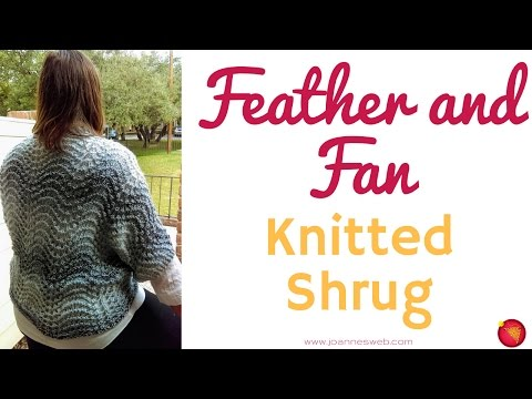 Feather and Fan Shrug