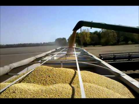Soybean Harvest 2011 Video - The Farmer's Life