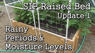 getlinkyoutube.com-SIP Raised Bed (Update 1) + Self-Watering Containers + How-To Monitor Moisture Levels