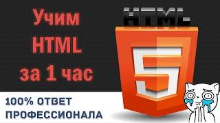 Учим HTML за 1 Час! #От Профессионала width=
