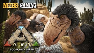 Ark: Survival Evolved - Terror Bird Flock!