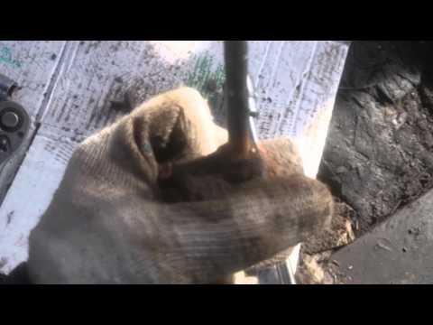 Замена подушки кулисы мкпп на альмере класссик