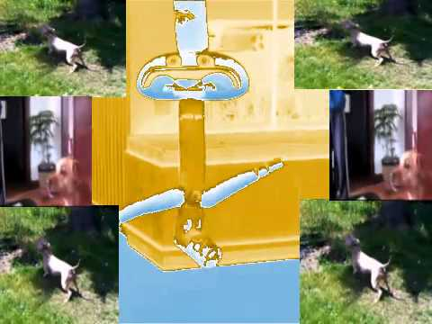 TROMBONE DUB STEPPING DOG FLIPPING OUT