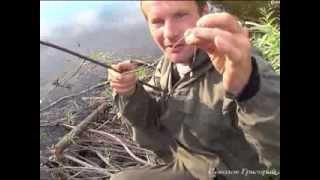 getlinkyoutube.com-Примитивная рыболовная удочка из крапивы и газовой зажигалки.