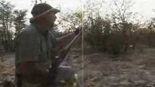 getlinkyoutube.com-Crazy Lion Hunt