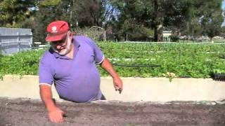 getlinkyoutube.com-How to Make a Living Farming a Quarter Acre