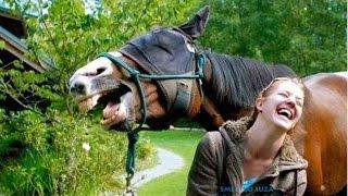 getlinkyoutube.com-Smeh do suza - Smešne životinje / Funny animals 3