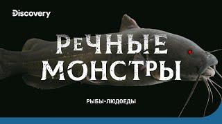 getlinkyoutube.com-Рыбы-людоеды - Речные монстры