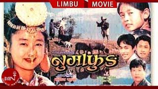 getlinkyoutube.com-Superhit Limbu Movie  Numafung | Alok Nembang | Most International Awarded Movie