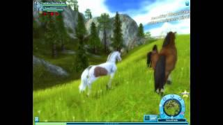 getlinkyoutube.com-Wild Horses (part1)