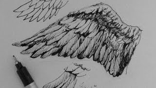 getlinkyoutube.com-Pen & Ink Drawing Tutorials   How to draw wings