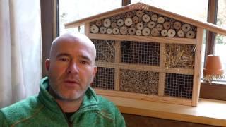 download video n tzlingshaus schritt f r schritt anleitung insektenhotel bauanleitung. Black Bedroom Furniture Sets. Home Design Ideas