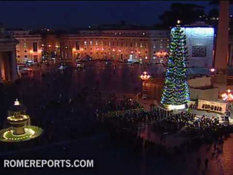 Christmas tree lights up Saint Peter's square