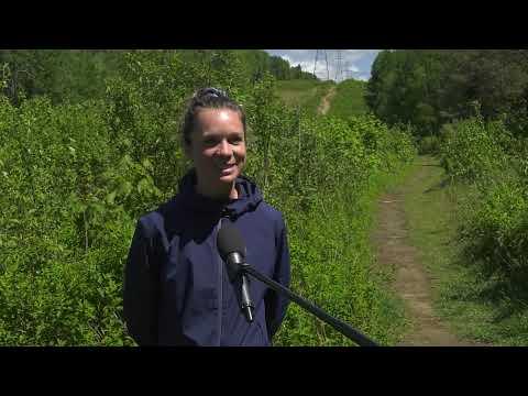 Le club de trail Mont-Sainte-Anne est officiellement lancé