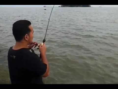 Pancing Siakap 4.8 KG / Fishing Barramundi with MK Brigade Team