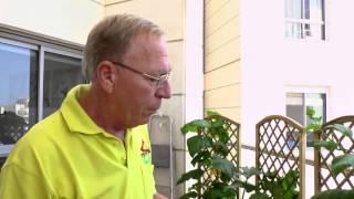 getlinkyoutube.com-גינת ירק ביתית במרפסת שגם נותנת צל ופרטיות מהשכנים - צוות גדרון