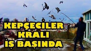 KEPÇE İLE GÜVERCİN YAKALAMAK catch the pigeon