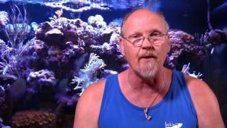 getlinkyoutube.com-LA Frag Guys   Jim Stime