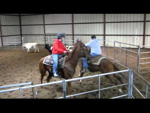 Tina Bars Lee - Skip 11/26/11 sorting mixed - blowout - youth rider - Valley View Ranch