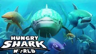 getlinkyoutube.com-Hungry Shark World - The New Hungry Shark Evolution???