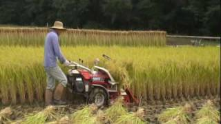getlinkyoutube.com-2009 クボタオートバインダーHF50で稲刈り 結束機の仕組み&放置プレー