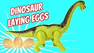 getlinkyoutube.com-Dinosaur Walking and Laying Eggs Toy - Dinosaurs Toys For Kids