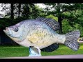 Nashville Fishing GuideS Crappie Percy Priest Lake