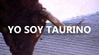 getlinkyoutube.com-TOROS SIETEIGLESIAS DE TRABANCOS  II Toro del Arrope 2012