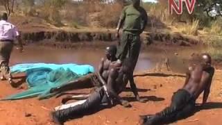 Abavubisa obutimba bw'ensiri bakubiddwa