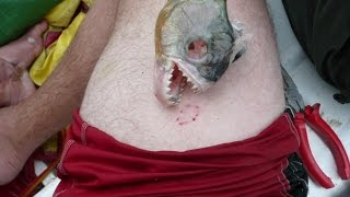 getlinkyoutube.com-Insane Fishing trip to Guyana! Arapaima, Payara, Piranha!