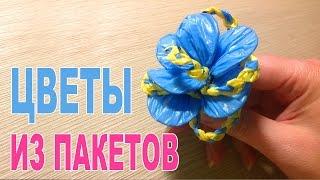 getlinkyoutube.com-Цветы своими руками из пакетов