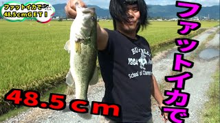 getlinkyoutube.com-バス釣り ファットイカで48cm!!