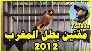 getlinkyoutube.com-chardonneret champion du maroc 2012