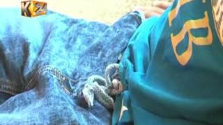 Mwanafunzi auguza majeraha baada ya kucharazwa na mwalimu, Mombasa