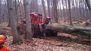 getlinkyoutube.com-timberjack  240