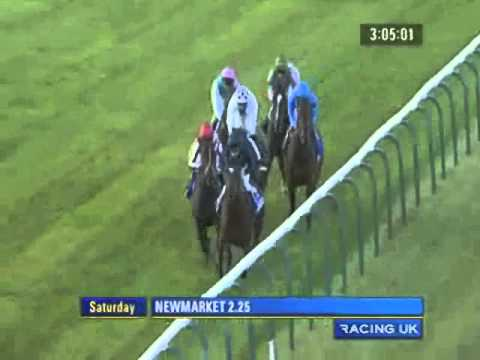 2010 Newmarket Dubai Dewhurst Stakes