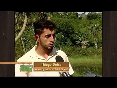 Reportagem Jornal do Campo - Projeto de reflorestamento Recupera Nascentes no Noroeste do ES