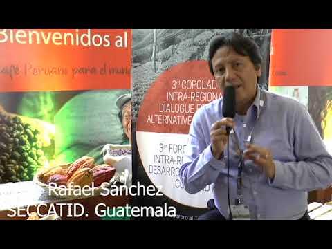 Juan Rafael Sánchez. SECCATID, Guatemala