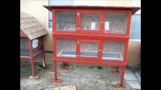 getlinkyoutube.com-Homemade Quail Cage