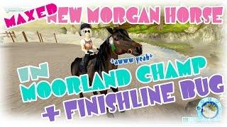 getlinkyoutube.com-MAXED new Morgan in Moorland Championship and FINISHLINE BUG Star Stable