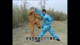 getlinkyoutube.com-Shaolin 5 combinations kung fu (wu he quan), combat methods