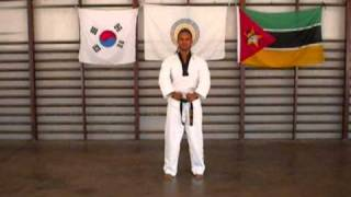 getlinkyoutube.com-Taekwondo Poomsae 1 - 8