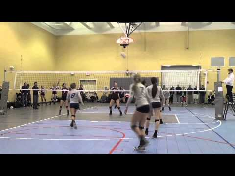 Mallory Taylor Volleyball Highlight