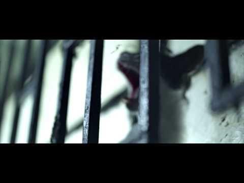BRAIN | SALUTE | Official Video | High Def