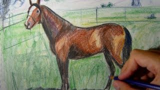 getlinkyoutube.com-How to draw a horse with colored pencils - Things to Draw