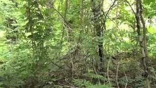 getlinkyoutube.com-On the Trail of John Wilkes Booth 2