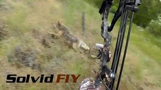 Insane Double Archery Coyote Hunting POV Head Cam - Solvid FIY